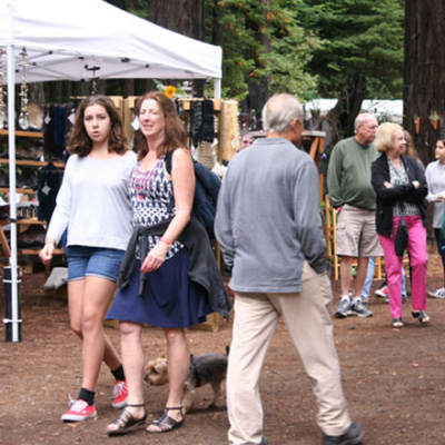 Art in the Redwoods Festival 2016