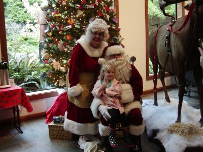 The 13th Annual Gualala Arts Center Festival of Trees