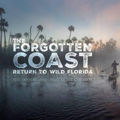 """The Forgotten Coast: Return to Wild Florida"" at Wildlife Film Fest"