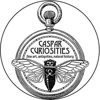 Caspar Curiosities