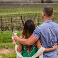 Friday Happy Hour at RIVINO Estate Winery with George Husaruk