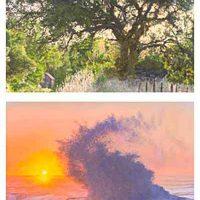 """""""Paths of Light"""" Oils & Giclées by David Jenks"""