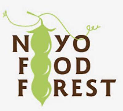 Noyo Food Forest Harvest Dinner