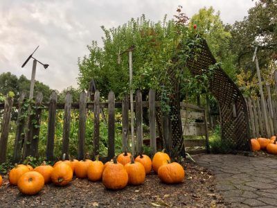 "The Enchanted Pumpkin Path 2017: A magical ""alte..."