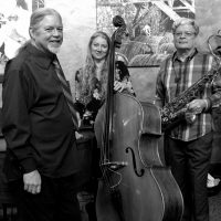 Vanek & May Trio at Ukiah Brewing Co.