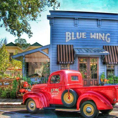 Bill Bensing at Blue Wing Sunday Brunch