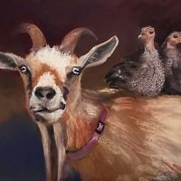 Barns and Barnyard Beasts