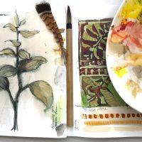 Nature Sketchbook Workshop