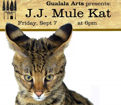 JJ Mule Kat in the Redwood Grove