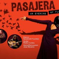Pasajera, an evening of Flamenco