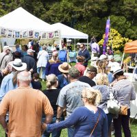 Call for Artists – Art in the Gardens 2019