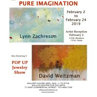 Pure Imagination: Lynn Zachreson & David Weitzman / A Pop Up Jewelry Show Featuring Local Artists