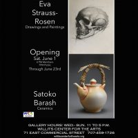 The Willits Center for The Arts Presents: Eva-Strauss Rosen & Satoko Barash
