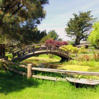 27th Annual Mendocino Coast Garden Tour