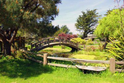 27th Annual Mendocino Coast Garden Tour