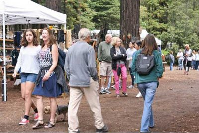 58th Annual Art in The Redwoods at Gualala Arts