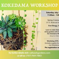 Kokedama String Garden Workshop
