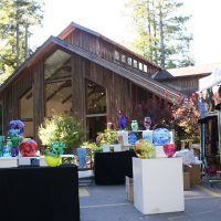 58th Annual Art in The Redwoods Festival Days at Gualala Arts