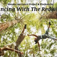 """Dancing With The Redwoods"" - A Special Fundraiser for the Arts"