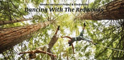 """Dancing With The Redwoods"" - A Special Fundraiser..."