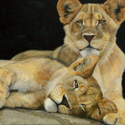 Witness: Portraits of Endangered Species Opening Reception at Gualala Arts.