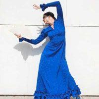 Sky, Flamenco en vivo Mendocino