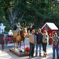 Gualala Arts' Annual Festival of Trees