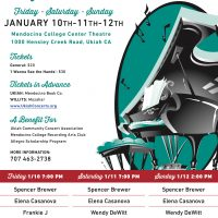 28th Annual Professional Pianists Concert