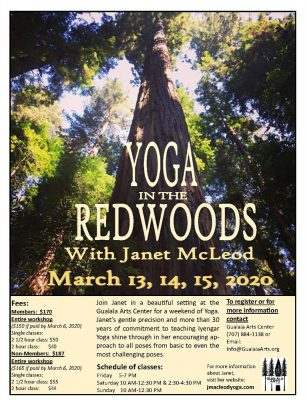 Yoga In The Redwoods With Instructor Janet McLeod....