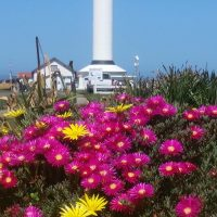 Our Lighthouse: In honor of the Point Arena Lighthouse's 150th Anniversary Opening Reception