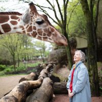 """The Woman Who Loves Giraffes"" (Streaming link at Arena Theater website)"