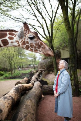 """""""The Woman Who Loves Giraffes"""" (Streaming link at Arena Theater website)"""