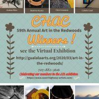 Art in the Redwoods Coast Highway Art Collective Winners!