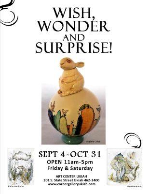 Wish Wonder and Surprise