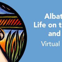 Mendocino County Museum: Albatross: Life On the Wind and Sea Virtual Exhibit