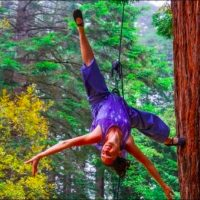 Mendocino Dance Project Spring Workshops In The Trees