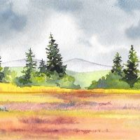 'Oil and Water' Lynne Whiting Robertson, Featured Artist at Co-op of Mendocino